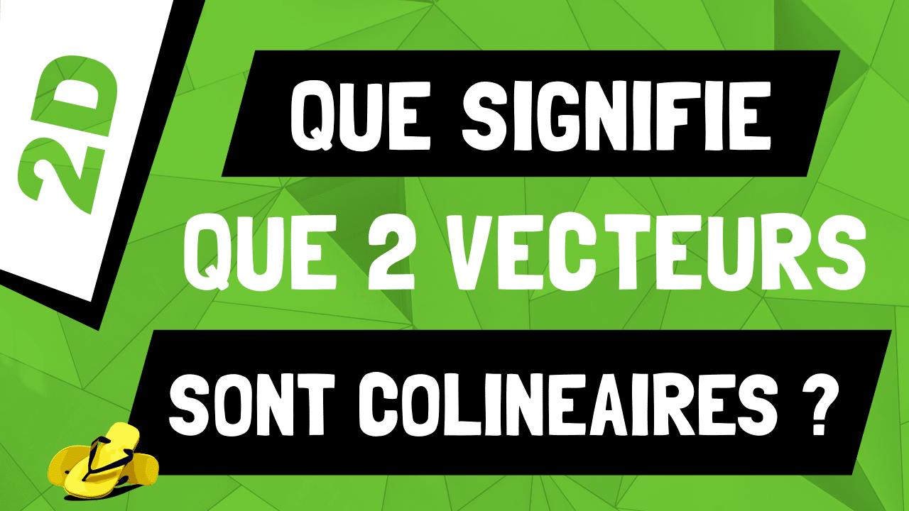 Que signifie ‹‹les deux vecteurs sont colinéaires ›› ?