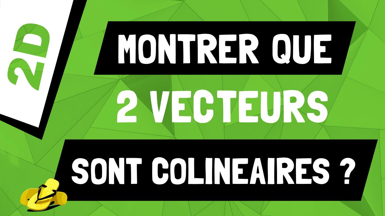 Comment montrer que deux vecteurs sont colinéaires 2D ?
